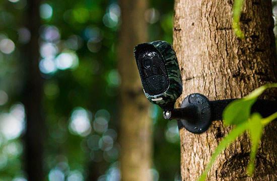 Arlo vs Blink XT vs Reolink vs EZVIZ C3A: telecamere WiFi a batteria