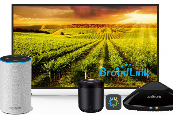 Broadlink Alexa