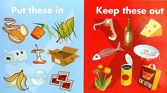 Cosa mettere nella compostiera domestica