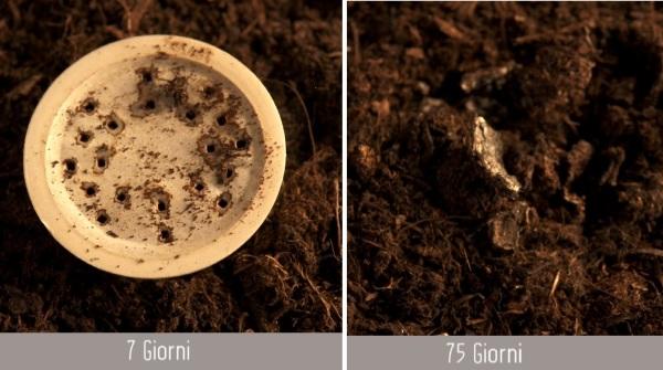 Capsule compostabili Mater-Bi