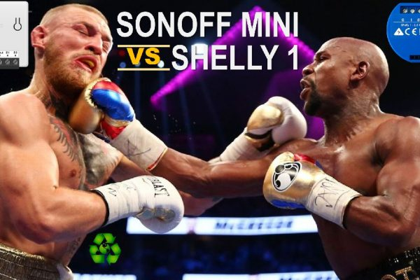 Sonoff Mini vs Shelly 1