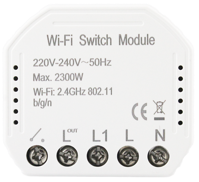 MOES 1 canale (QS-WIFI-S03)
